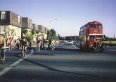 Sycamore bike lane, Davis, CA, 1967