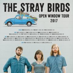 Live DiRT with The Stray Birds on May 25th