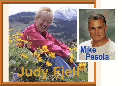 Fjell & Pesola