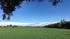 A field west of Davis