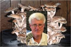 Mike Davis in Shiitake Mushrooms