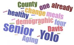 Older in Yolo, a word cloud