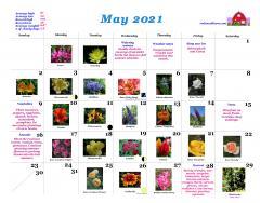 RWB calendar May 2021
