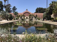 San Diego Botanical @ Balboa Park