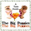 The Big Poppies, KDRT, Listening Lyrics, Pieter Pastoor