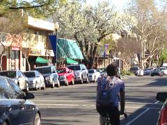 Davis street scene, Yolo visitors